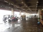 沼津漁港 魚市場